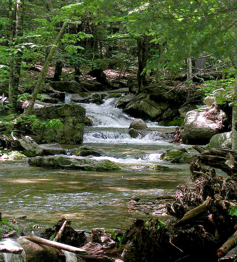 Moulton Brook